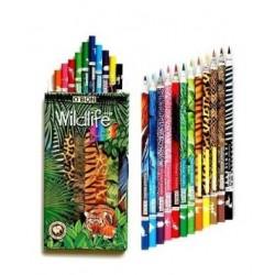 Set 12 Creioane colorate Wildlife