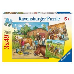 PUZZLE LUMEA CAILOR , 3x49 PIESE