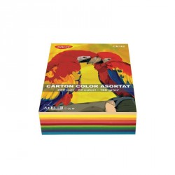 Carton color A4 250 coli 10 cul DACO 160G/mp